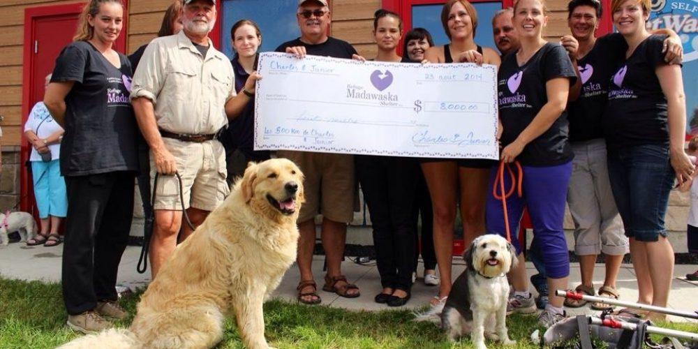 Les 500 km de Charles Collin et son chien Junior permettent d'amasser 9000 $ pour le Refuge Madawaska Shelter